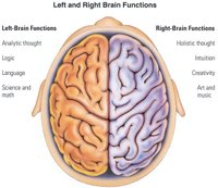 Left_right_brain